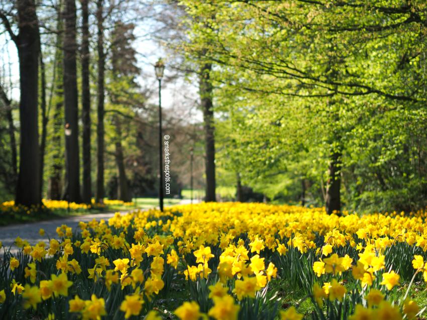 national_botanic_garden_belgium_meise_smarksthespots_blog_01