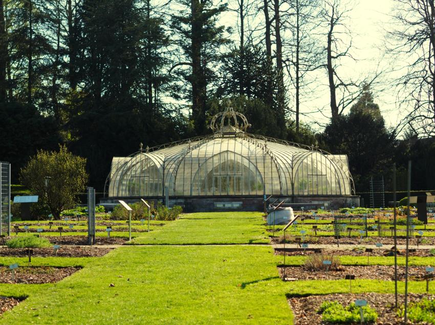 Botanic Garden Of Meise S Marks The Spots