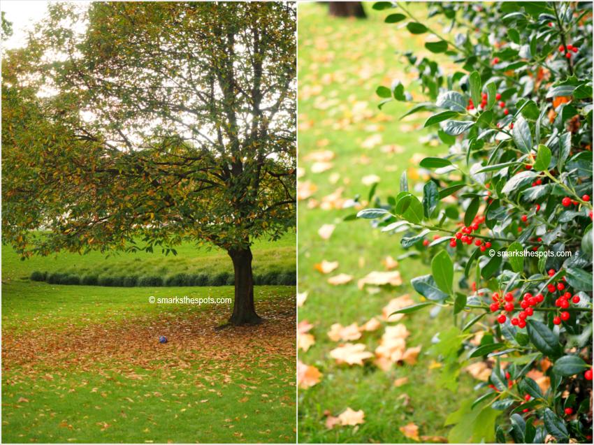 autumn_brussels_smarksthespots_blog_02