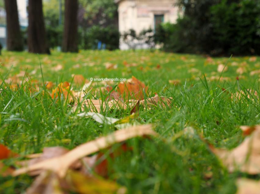 autumn_brussels_smarksthespots_blog_03