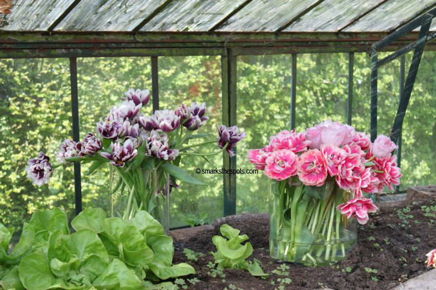 floralia_brussels_smarksthespots_blog_17