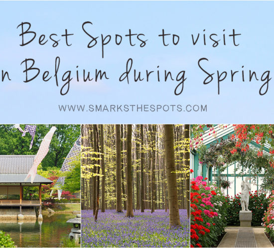 Best Spots to Visit in Belgium during Spring - S Marks The Spots Blog